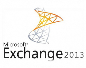 Microsoft Exchange Enterprise CAL 2013 Sngl OPEN 1 License No Level Device CAL Device CAL Without Services